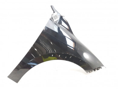Right front fender 631005149R